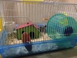 Hamster + gaiola + acessórios
