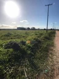 Terreno à venda, 1250 m² por R$ 95.000 - Sao Gonçalo Do Amarante - São Gonçalo do Amarante