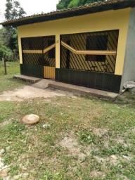 Casa castanhal