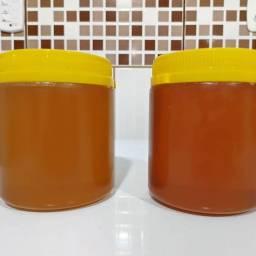 Mel de abelha direto produtor