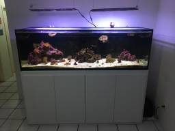 Aquário marinho completo 200x60x60