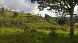 Excelente Fazenda 174 hectares Senador Modestino Gonçalves/Diamantina-MG