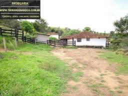 Fazenda 13 hectares 130 mil metros entre Para de Minas e Itaúna gado ou Plantações