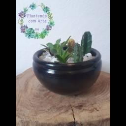 Vaso de cerâmica com cinco cactos e suculentas diferentes.