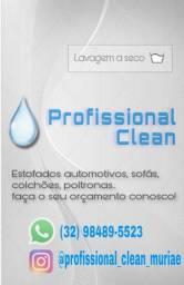 Higienização técnica em sofás, colchões, automotiva.