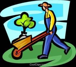 Jardineiro e paisagista com experiência