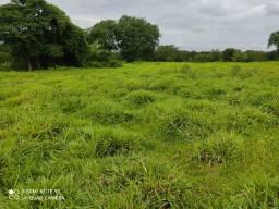 Fazenda 415 alqueires na bacia do Araguaia