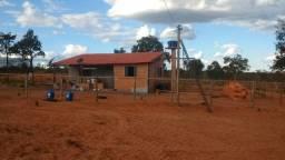 Vendo urgente 526 hectares buritizeiro Mg