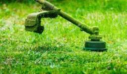 Limpeza de terreno