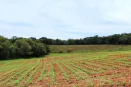 (JM) Carta de Credito para Compra de Fazenda e Investimentos