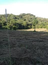 Perto de Canoas,(10.000m²)