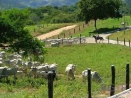 Fazenda rural à venda, centro, jequitinhonha - fa0006.
