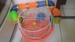 Gaiolas hamster