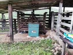 Fazenda 290 hectares em Minas Gerais