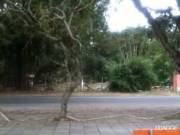 Terreno à venda em Serraria, Porto alegre cod:LU429180