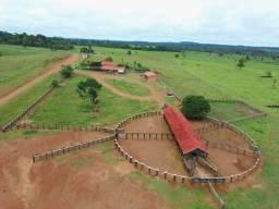 Fazenda em Rondônia