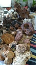 Pedras para coleção e estudos