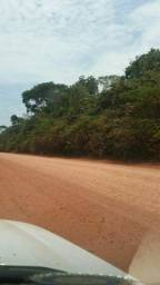 Lote com 100 hectares