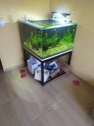 Vendo aquário 300 litros completo, aceito cartão..
