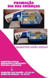 Kit com hamster e tudo que ele precisa