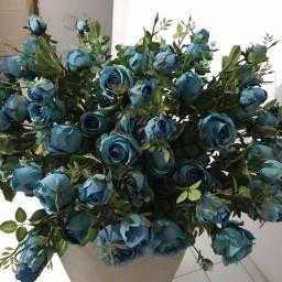 Plantas Ornamentais.Belíssimas Rosas Importadas.