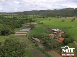Fazenda Rica em Água c/ Tranques de Peixe - Santa Cruz de Goiás