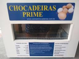 Chocadeira 100 ovos 220wts
