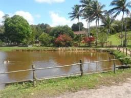 Fazenda em com 22 hectares, entre Catu e Alagoinhas-BA