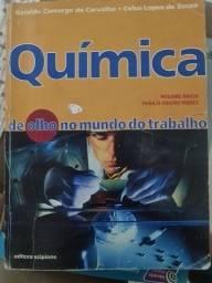 Química de Olho no Mundo do Trabalho<br><br>Geraldo Camargo de Carvalho e Celso Lopes de Souza<br><br>