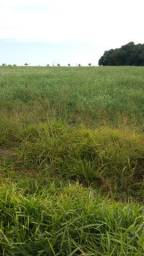 Terreno de chácara 400m2 $ 35mil só a vista