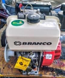 Motor Branco 13 hp diesel 2x1
