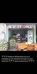 Distribuidora de coco verde