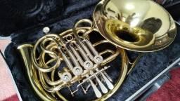 Trompa Dolphin (usada) + Case - Ideal para aprender! Invista em seu sonho!