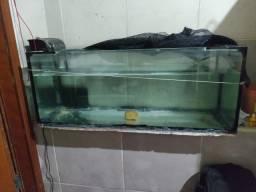 Vendo aquário e filtro
