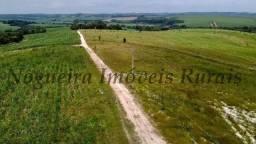 Título do anúncio: Fazenda com 93 alqueires na região (Nogueira Imóveis Rurais)