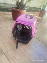 Caixa transporte cachorro