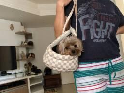 Bolsa transporte Pet estampa Louis Vuitton