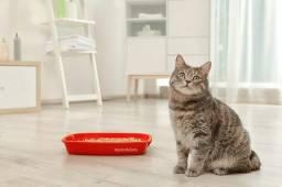 *Vendo granulado higiênico para gatos e roedores