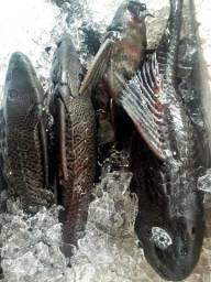Trabalhamos com peixe regianais entregamos tratados combramos uma taxa