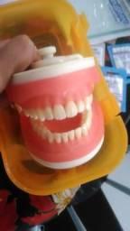 Manequim Odontologia