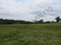REF 1269 Sítio 7,25 alqueires, pertinho da cidade, grande oportunidade, Imobiliária Paletó