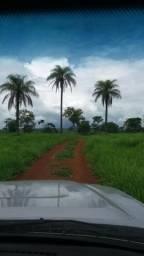 Troca por outra no Tocantins - Fazenda 36 alqueires ( 174,24 hectares ) Formosa-GO
