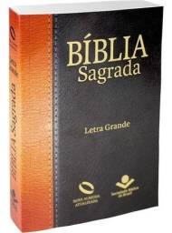 Bíblia Sagrada Letra Grande Nova Almeida Atualizada Barata