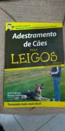 Adestramento para cães!