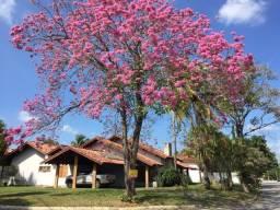 Casa 4 quartos/suite/piscina- Permuta imóvel em Ubatuba- como parte de pagamento!!!
