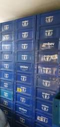 Caixa de litrinho, barrigudinha 300ml Ambev