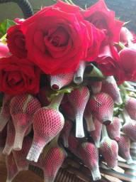 Rosas direto do produtor