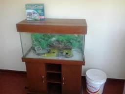 Aquário Completo de 144litros para peixe /c Móvel de Aquário, Filtro AquaClear,