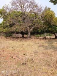 Chácara Escriturada 18 hectares Formosa GO