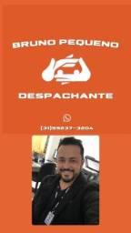 Título do anúncio: DESPACHANTE